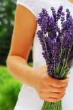花束淡紫色 免版税库存照片