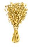 花束燕麦 库存图片