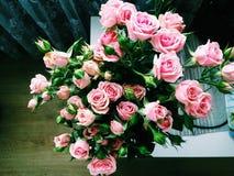 花束玫瑰顶视图 库存照片
