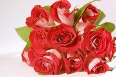 花束玫瑰 库存照片