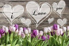 花束白色和桃红色郁金香和心脏框架与词我爱你 免版税库存照片