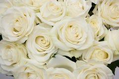 花束白色玫瑰特写镜头 免版税库存图片