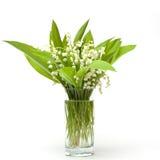 花束百合谷 库存图片