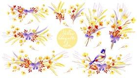 花束的黄色水彩收藏 婚姻的设计的,艺术创作自然cliparts 免版税库存图片