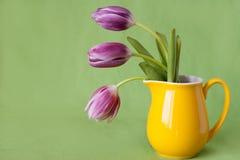 花束精美水罐紫色郁金香黄色 免版税库存照片