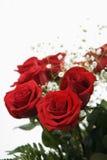 花束红色玫瑰 库存照片