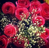 花束能下落叶子红色玫瑰看到水您 免版税图库摄影