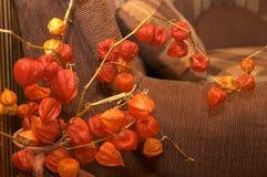 花束花葡萄酒 库存照片