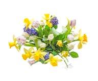 花束,与黄色黄水仙,白色郁金香的植物布置, 免版税库存照片