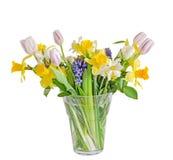 花束,与黄色黄水仙,白色郁金香的植物布置, 库存照片