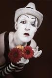 花束gerberas帽子笑剧红色白色 免版税图库摄影