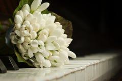花束snowdrops 免版税图库摄影