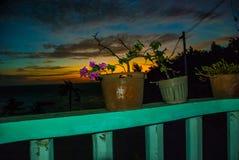 花查出罐白色 日落, Apo海岛,菲律宾 免版税库存照片