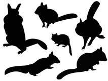花栗鼠剪影动物剪贴美术 库存图片