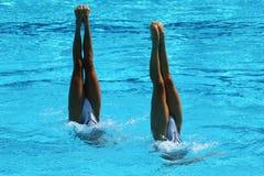 花样游泳二重奏在竞争时 免版税库存照片