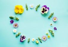 花框架例证春天向量 图库摄影