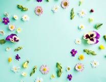 花框架例证春天向量 免版税库存照片