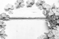 花框架在桌上的 库存照片