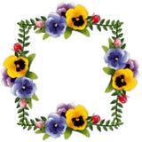 花框架蝴蝶花玫瑰 皇族释放例证