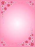 花框架,桃红色,红色,桃红色背景,五颜六色,不同的花,华伦泰的,卡片有趣的想法,任何holida的 库存照片
