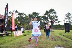 花梢在公园的马拉松适合的人民连续种族 免版税图库摄影