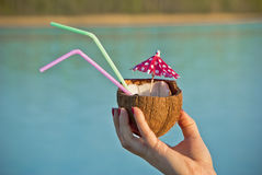 花梢椰子饮料 库存图片