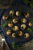 花梢法国热的Escargot开胃菜 库存图片