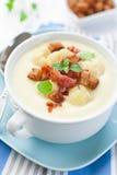 花椰菜乳脂状的汤 免版税库存照片