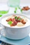 花椰菜乳脂状的汤 库存图片
