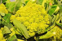 花椰菜和绿色叶子 库存图片