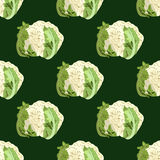 花椰菜无缝的样式 库存照片