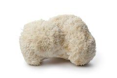 花椰菜蘑菇 库存照片