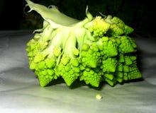 花椰菜 库存照片
