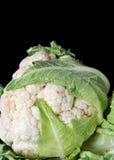 花椰菜 库存图片