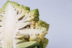花椰菜Romanesco硬花甘蓝 库存图片