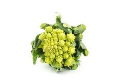 花椰菜Romanesco 免版税库存照片
