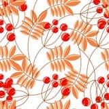 花楸浆果分支无缝的样式 向量背景 库存图片