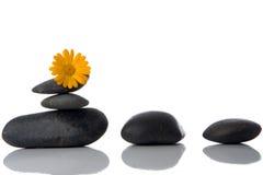 花温泉向黄色扔石头 库存照片