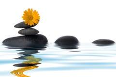 花温泉向黄色扔石头 免版税库存照片