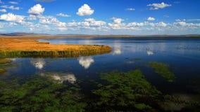 花湖 库存照片