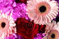 花玫瑰和雏菊花束  免版税库存图片