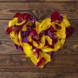 花瓣心脏 库存图片