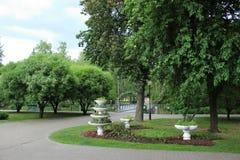 花瓶在公园,花圃 免版税图库摄影