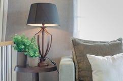 花瓶有木灯的植物在木桌边和经典之作 库存图片