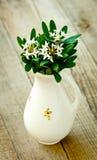 花瓶葡萄酒白色 免版税库存照片
