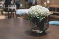 花瓶装饰的植物在桌上 图库摄影