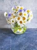 花瓶雏菊花,在具体背景的自创内部矢车菊 库存照片