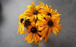 花瓶黄色 免版税库存图片