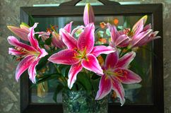 花瓶Lilys 免版税图库摄影
