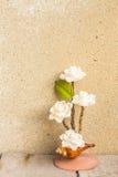 花由壳做成在木 库存照片